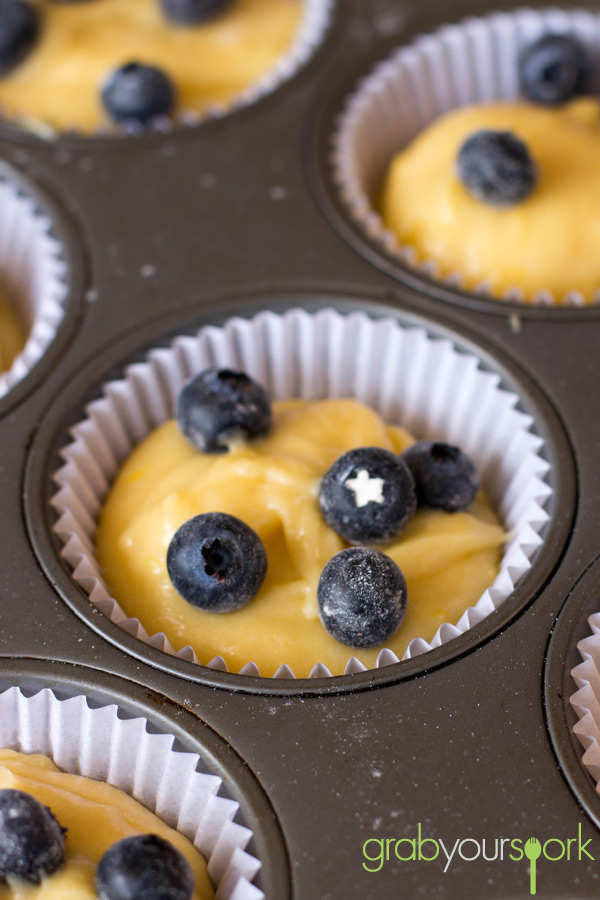 Blueberry and Lemon Cupcakes Mixture