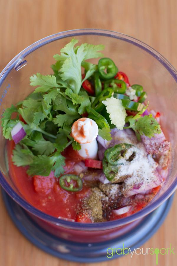 Tomato Salsa in Blitzer